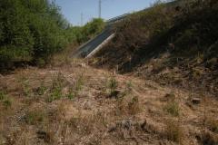Totální-herbicid-dráha-1